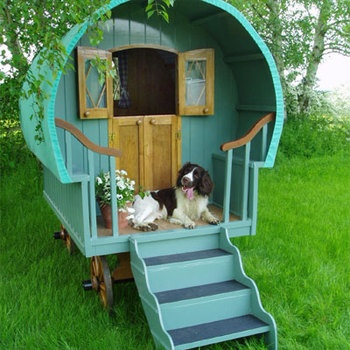 Home Images Build A Dog House This Summer Build A Dog House This