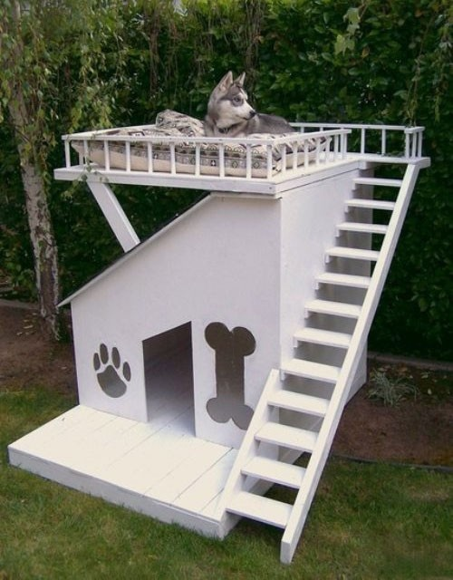 OR You Could Contact Heath Refinishing In Dallas To Build A Custom Made  Doghouse For Your Devoted Pet.